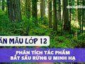 Phân tích truyện Bắt sấu rừng U Minh Hạ - Văn mẫu lớp 12
