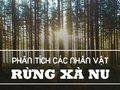 Phân tích các nhân vật trong rừng xà nu (Nguyễn Trung Thành)