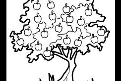 Bộ 10+ tranh tô màu cây ăn quả đẹp nhất dành cho bé 4 tuổi