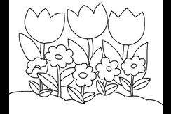 Top tranh tô màu hoa đơn giản cho bé mầm non rèn luyện mỗi ngày
