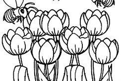 Bộ tranh tô màu hoa tulip cho bé nhiều chủ đề kích thích sáng tạo