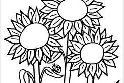 20 tranh tô màu hoa đẹp và đơn giản cho bé từ 3-5 tuổi