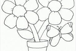 Bộ tranh tô màu nhiều loại cây hoa trong vườn trường của bé