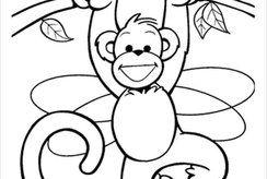 Top tranh con khỉ cho bé tô màu được tải về nhiều nhất