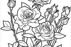 Tuyển tập 20+ tranh tô màu về hoa cho bé thỏa sức chọn lựa