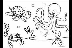 Tranh tô màu động vật biển giúp bé khám phá đại dương