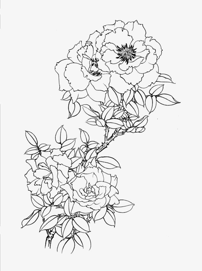mau tranh hoa mau don don gian ma dep