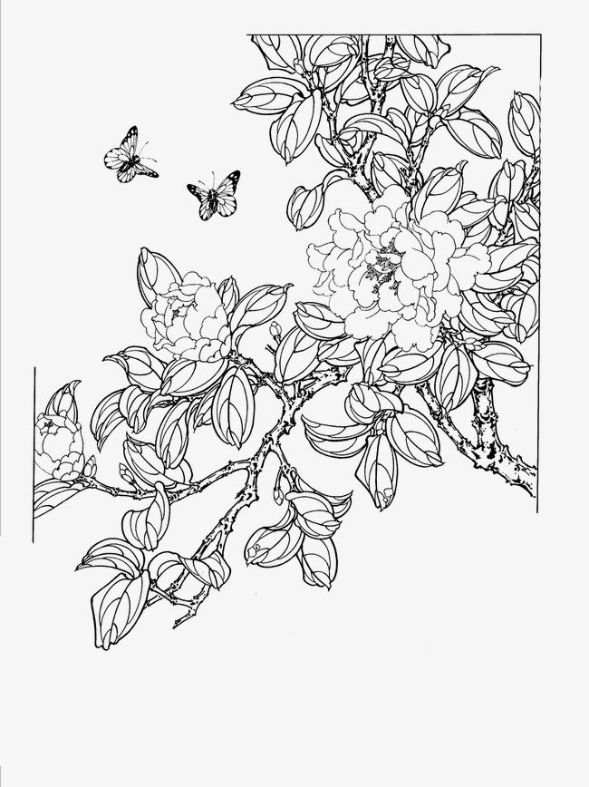 tranh hoa mau don kich thuoc nho