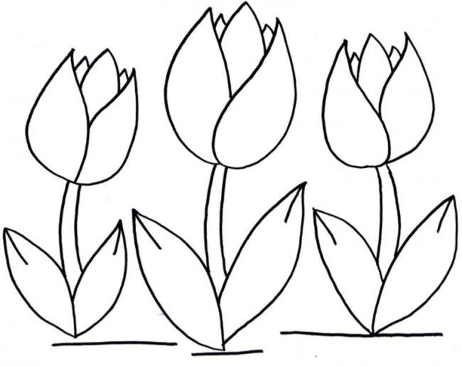 tranh to mau  hoa tuy lip don gian cho tre mam non