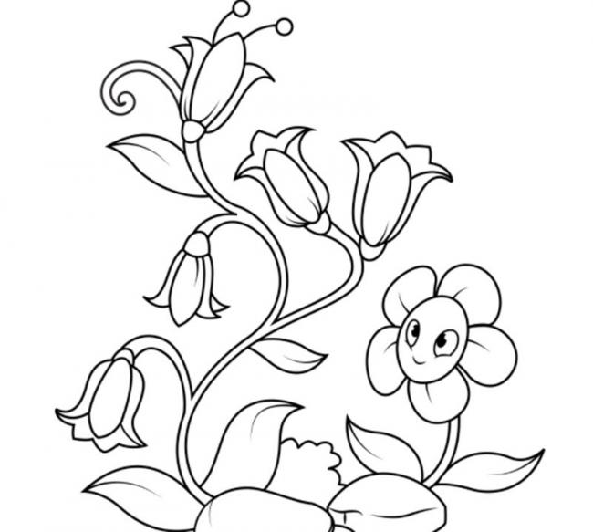 tranh to mau bong hoa chuong mat cuoi
