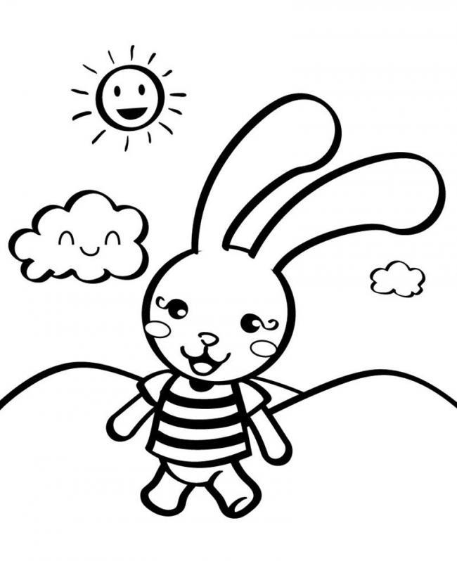 Thỏ con đi học