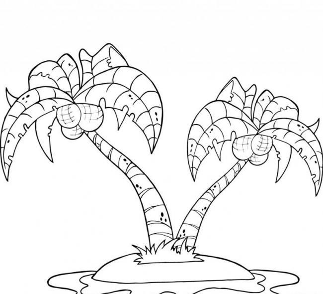 hai cây dừa nặng trĩu những quả