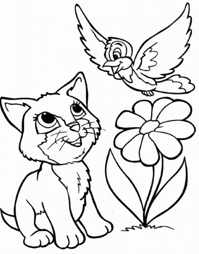 Chú mèo đang nói chuyện gì với bạn chim nhỉ các bé?