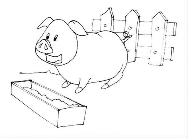 Lợn con ủn ỉn