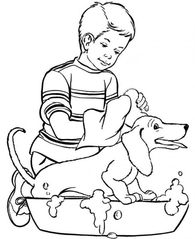 Chăm sóc cho bạn cún cẩn thận