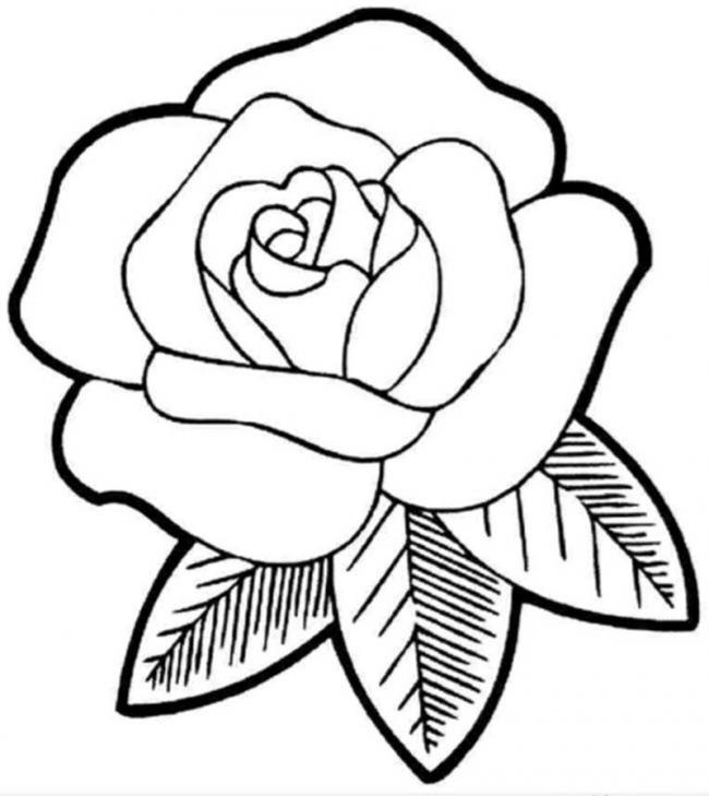 tranh to mau hoa hong don gian cho tre 3 tuoi