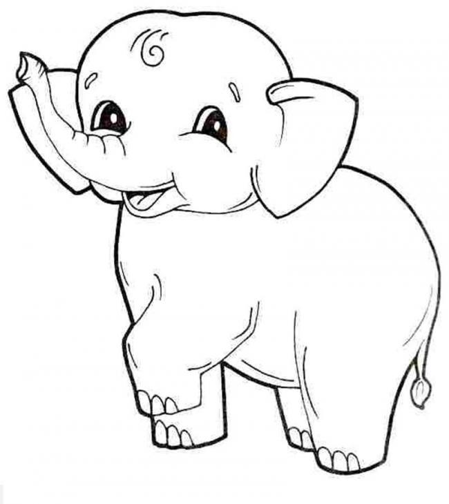 Bạn voi vui vẻ