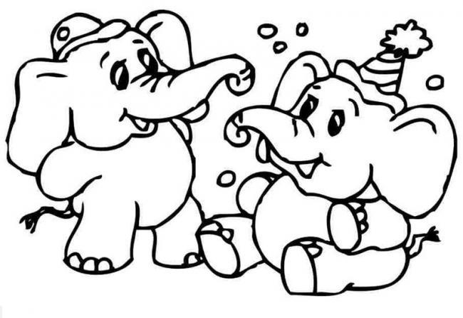 Hai bạn voi cùng nhau chơi vui vẻ chưa kìa.