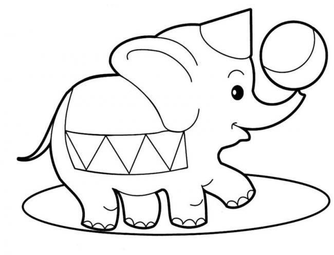 Chú voi làm xiếc với quả bóng