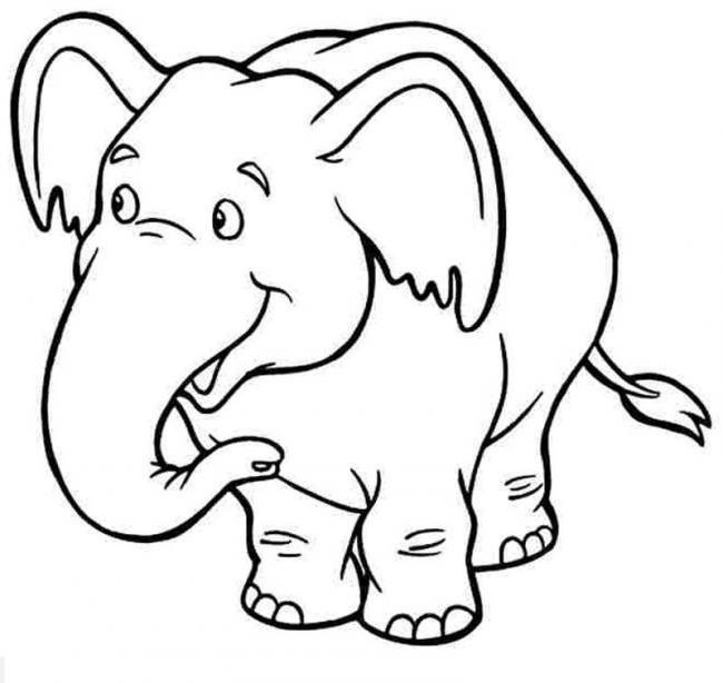 Chú voi con ở bản Đôn