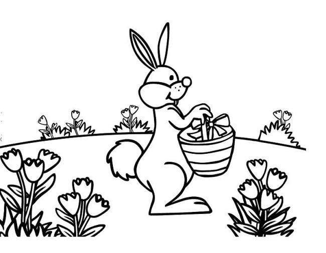 Bạn thỏ tung tăng đi dạo trong vườn hoa
