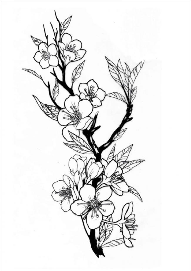 hình ảnh hoa đào ngày xuân nở rộ với đầy lộcnon
