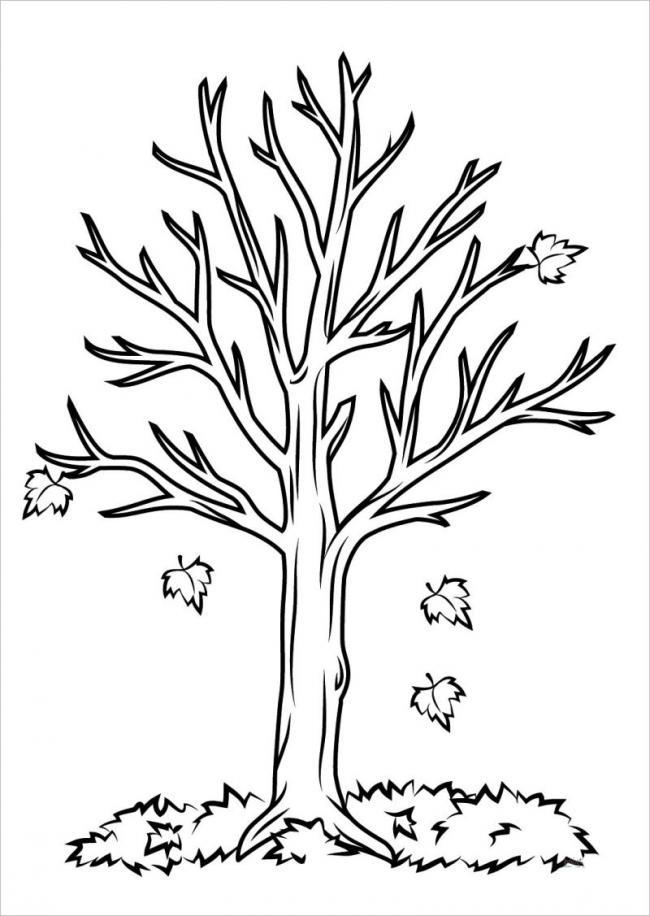Bức hình cây lá phong rụng lá vào mùa thu