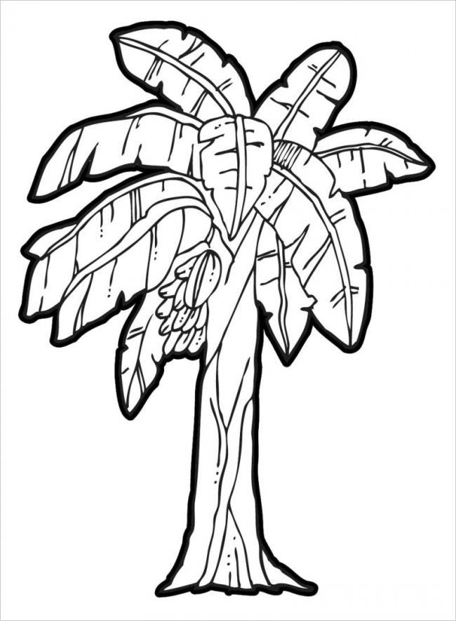 hình ảnh buồng chuối chínsai trĩu quả cuối thu