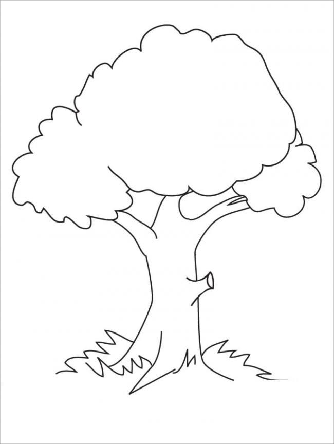 tranh vẽ cây mùa xuân đâm chồi nảy lộc