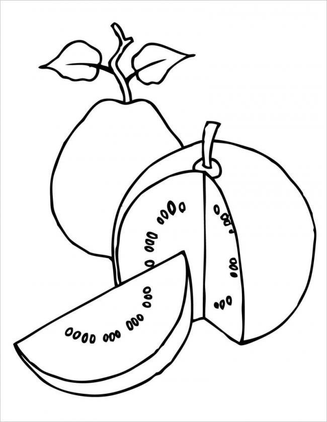 hình ảnh những trái ổi có vỏ xanh và nhiều hạt