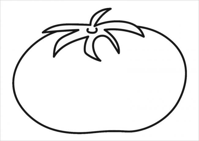 Hình vẽ quả cà chua chín mọng