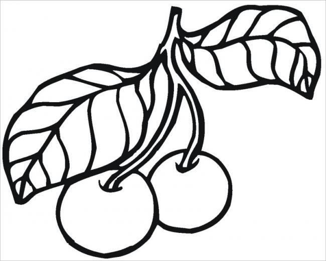 Tranh vẽ hình trái sơ - ri cho bé
