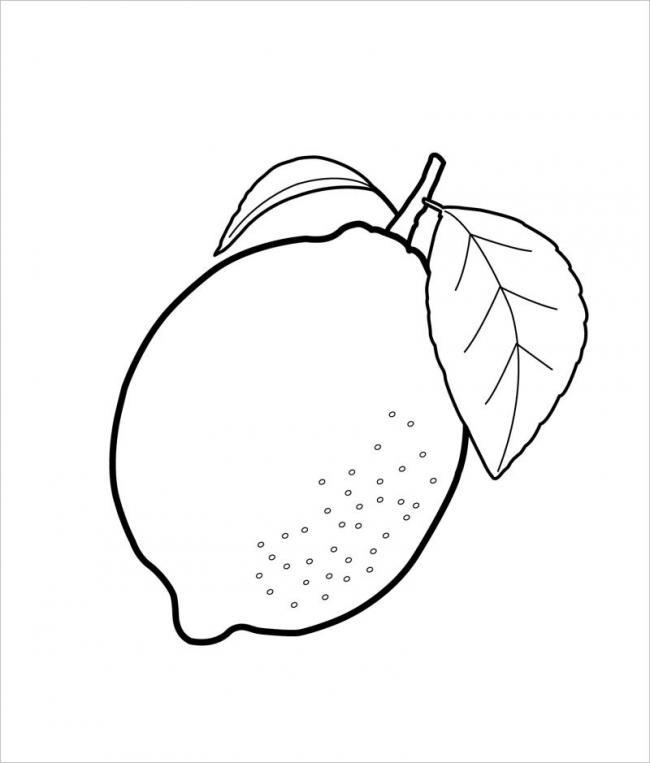 hình vẽ trái chanh thường dùng để vắt nước uống