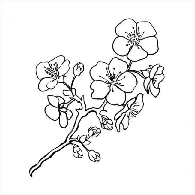 Hình vẽ cành hoa đào bắt đầu chớm nở
