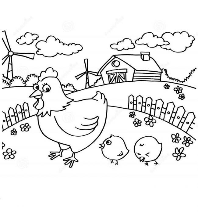 Mẹ gà dẫn gà con đi dạo ngày nắng đẹp