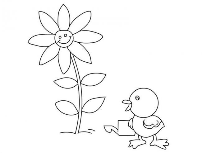 Gà con chăm chỉ tưới nước cho hoa