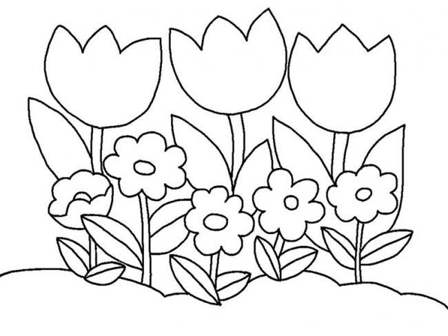 tranh to mau khom hoa tuy lip don gian cho be