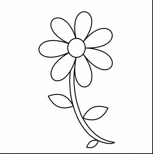 tranh tô màu hoa nhiều cánh dạng đơn giản nhất