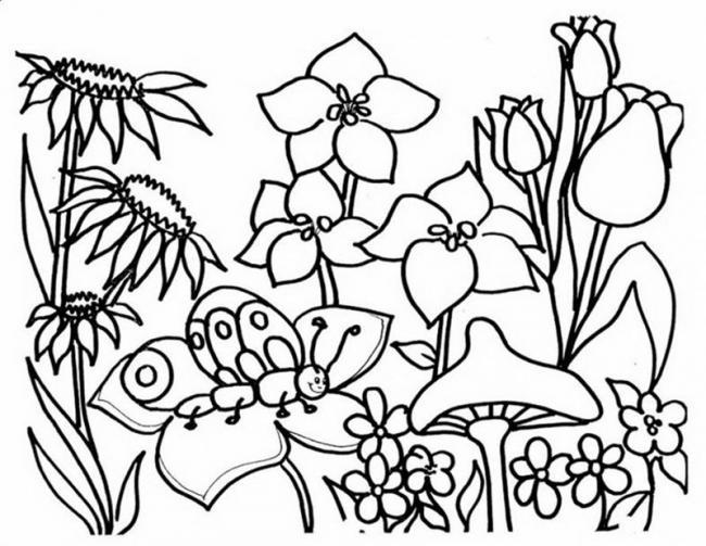 tranh to mau vuon hoa va chu buom xinh