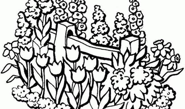 vuon hoa ben hang rao nho