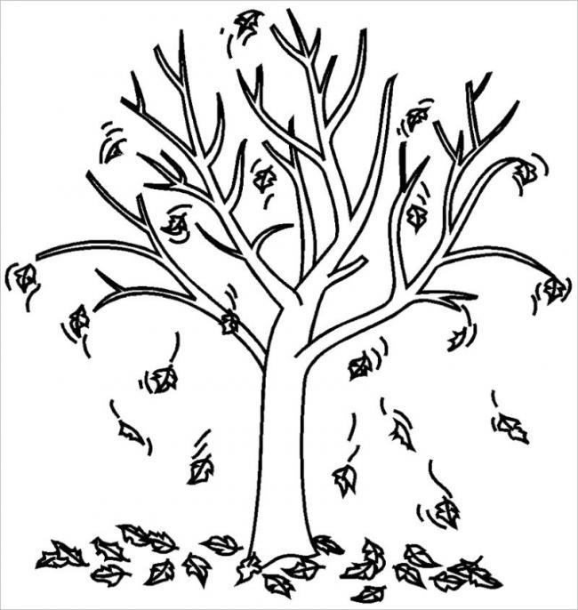 hình ảnh lá cây rụng vào mùa thu