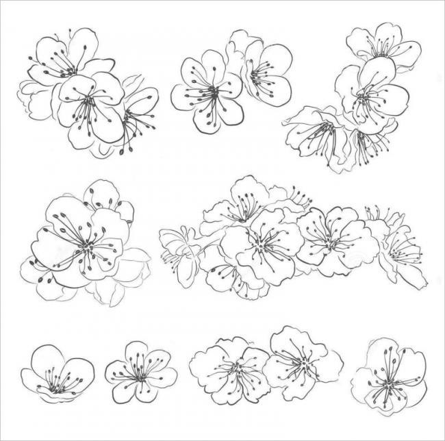 Tranh tô màu hoa mai đơn giản cho bé tập tô
