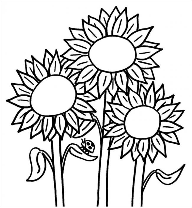 Hình hoa hướng dương và chú cánh cam dễ thương