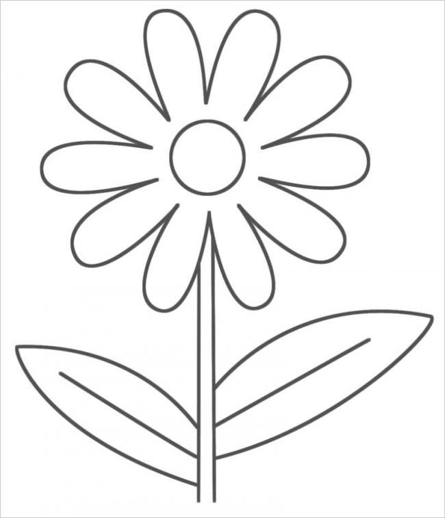 Tranh bông hoa cúc đơn giản