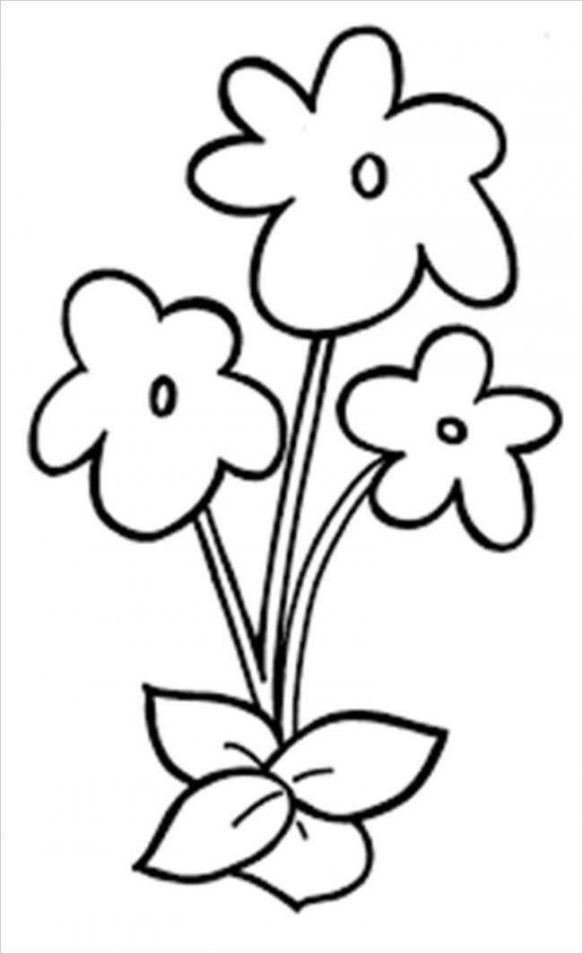 Tô màu bông hoa 5 cánh đơn giản