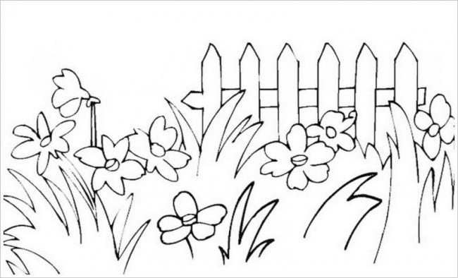 Bức hình vườn hoa cỏ dại