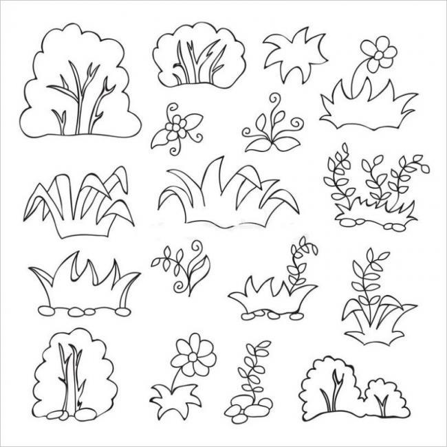 ảnh hoa cỏ cây lácùng làm đẹp cho cảcánh rừng