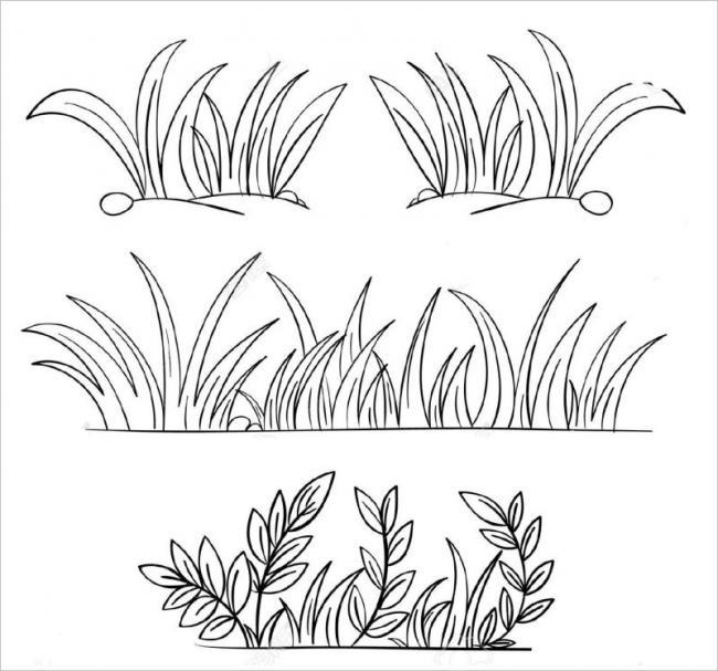hình những đám cây cỏ có mặt khắp nơi quanh chúng ta