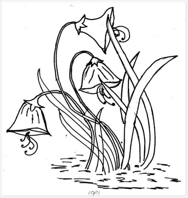 bức vẽ một khóm cỏdại đang ra hoa