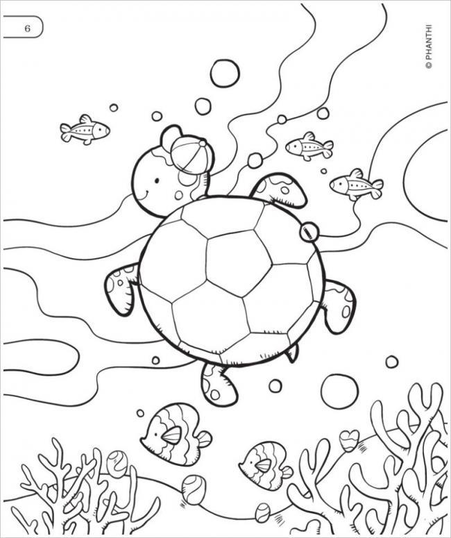 Bạn rùa nhỏ đáng yêu